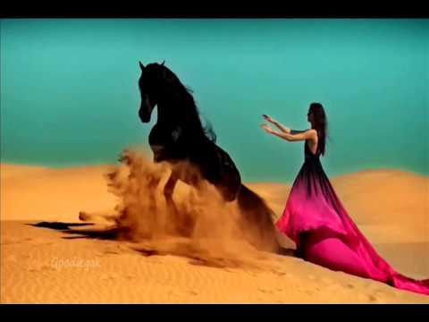 Arabian nights Belly dance music mouth organ harmonica -Elwis Roshan Fernando J