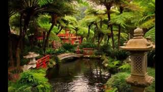 1 Hour Of Relaxing Japanese Music Spa Music