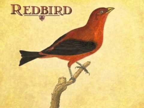 redbird hold on tom waits