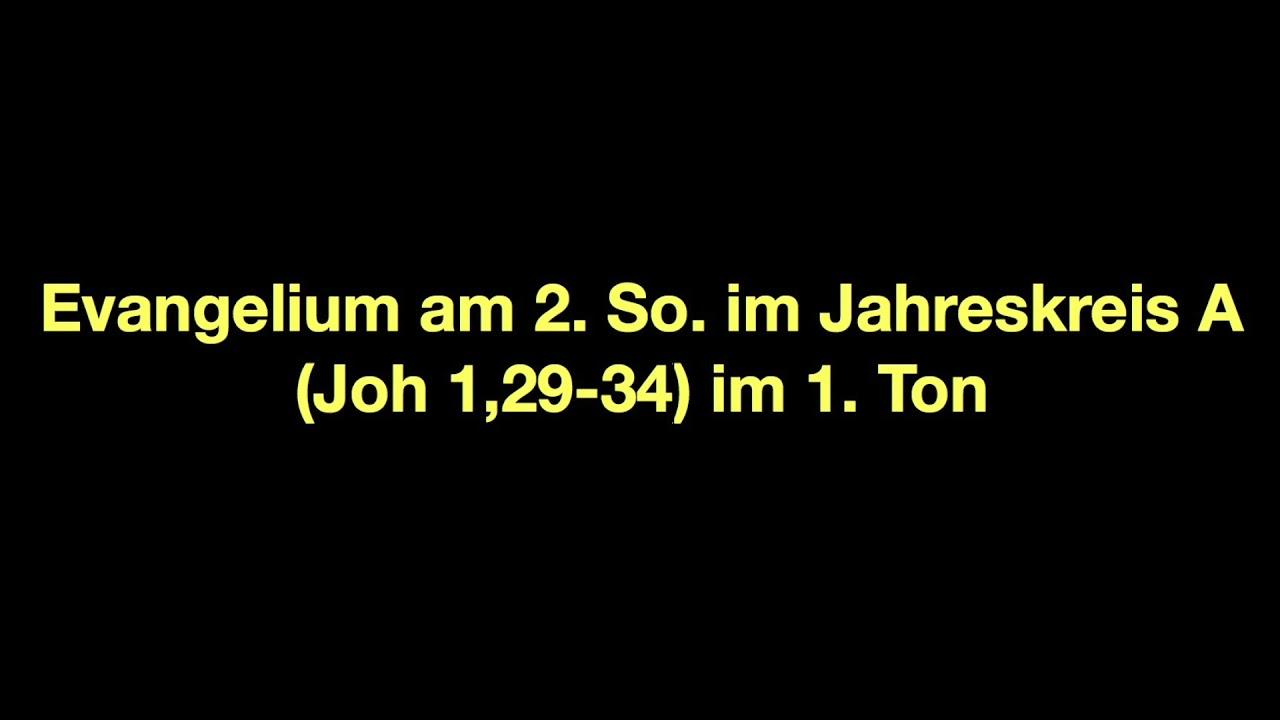 Joh 1 29 34