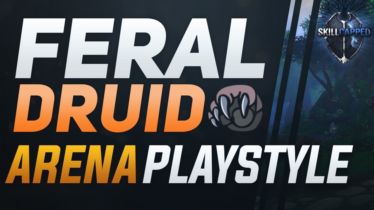 Feral Druid Bfa 3v3 Arena Guide Best Comps Pvp Talents Azerite Traits And Playstyle Youtube