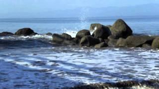 felas water no get enemy remixmov