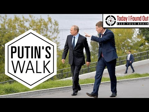 why-does-vladimir-putin-walk-so-weird?