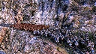 300 Spartans vs 20 000 Persians Ultimate Epic Battle Simulator