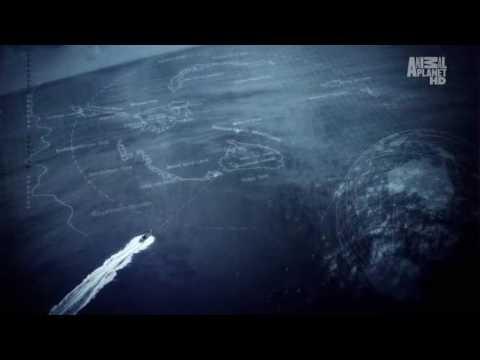 Whale Wars Season 2 Theme / Opening