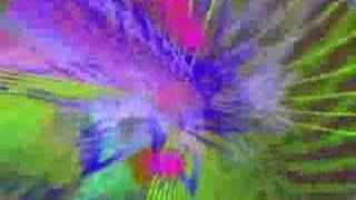 PETIT YERO BANTINGHEL - ON DYRAMA
