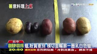 【TVBS】蠟質馬鈴薯澱粉含量低水份高 適合燉、炒