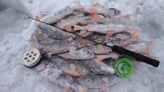 Поиск окуня с эхолотом Практик 7 Wi Fi Рыбалка на Шульбинском водохранилище Семипалатинск