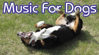 How to Calm My Dog! 15 Hours of NEW Relaxing Music for Dogs!