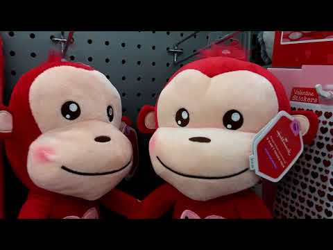 Singing Valentine's Day Animals At Walmart 2018