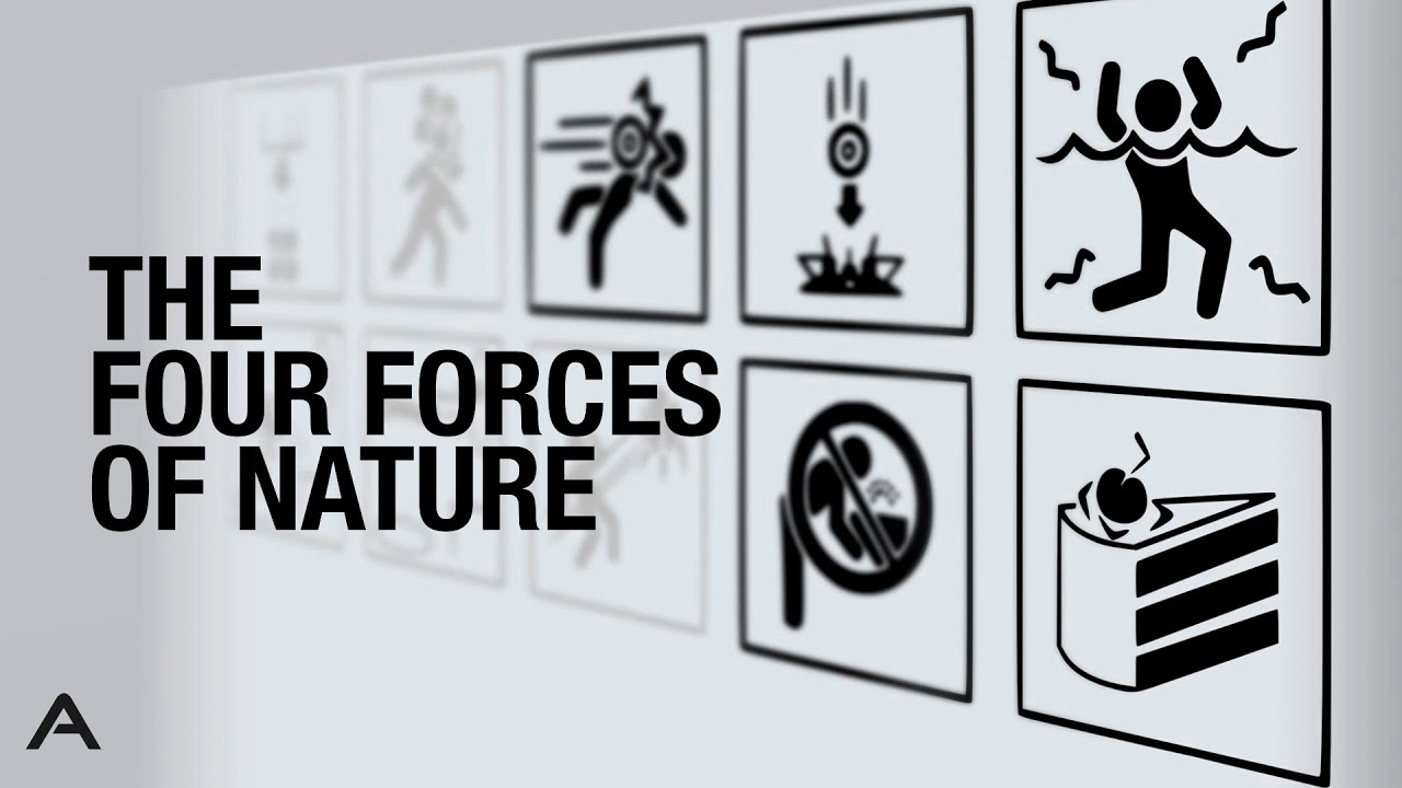 Download The Four Forces of Nature