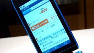 「REGZA Phone T004」のPCサイトビューアーを起動してみた