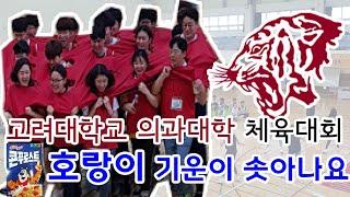 고려대학교 의과대학 대학생 체육대회 진행영상-호랑이 기…