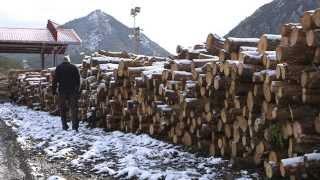 Made in Aragón Empresa 34 - Biomasa (HD)