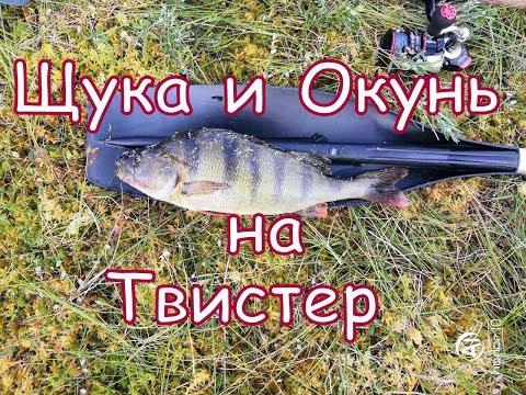 Рыбалка на диком озере в ХМАО 2019. Окунь, щука на спиннинг.
