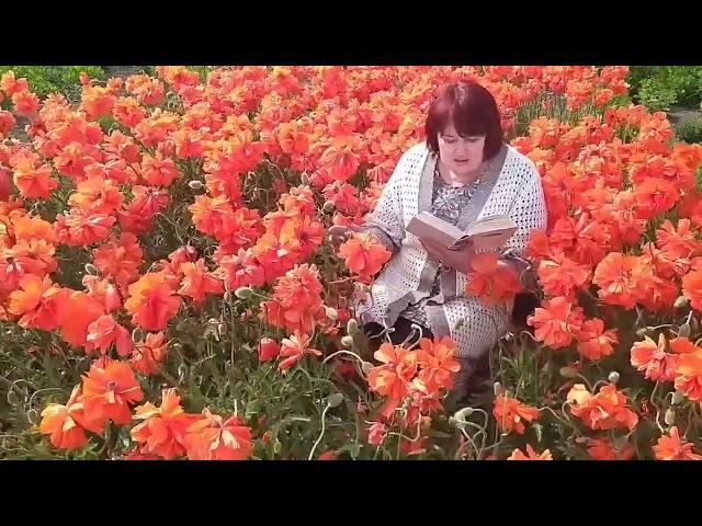 Наталья Соломаха читает произведение «Полевые цветы» (Бунин Иван Алексеевич)