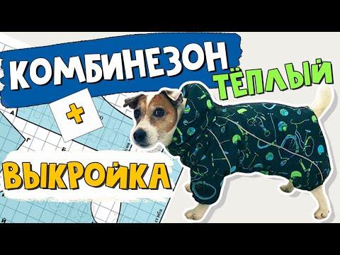 Как сшить комбинезон собаке самим