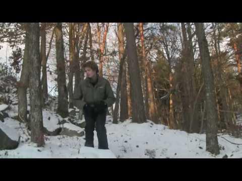 daler-mehndi---tunak-tunak-tun(hd-video)