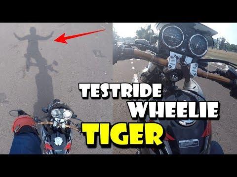 TESTRIDE TIGER EDAN - WHEELIE SEIMBANG & STABIL