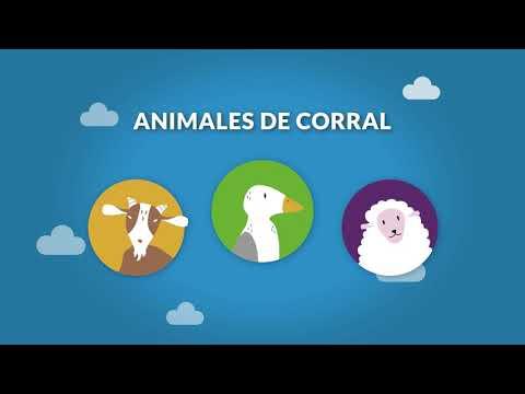 Ecoparque Mendoza