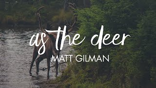 As The Deer - Matt Gilman