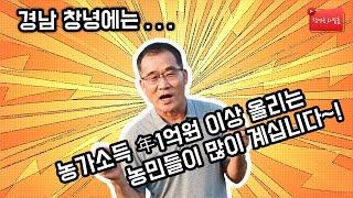 마늘 농업으로 연 1억이상 수익창출~~!!
