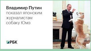 Путин показал японским журналистам собаку породы акита