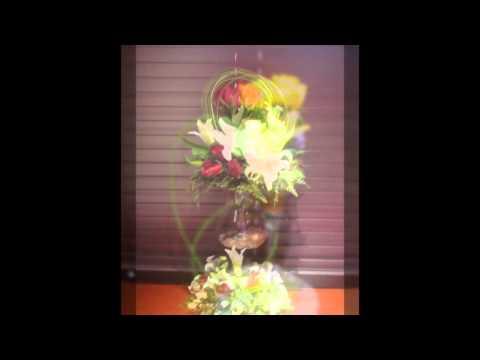 daisy flower qatar