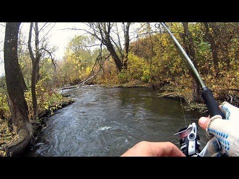 Нифига себе, какие кабаны клюют в этом ручье Рвем сети местных Рыбалка на спиннинг.
