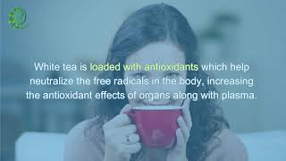 13 Fantastic Benefits of White Tea |  Organic Facts