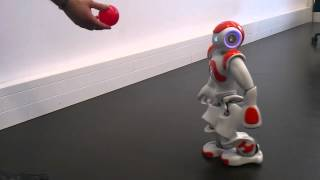 NAO robot tracking a red ball