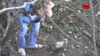 Малыш сутки сидел в кустах рядом с убитой мамой. Убийство Златоуст. Ребенок Мама