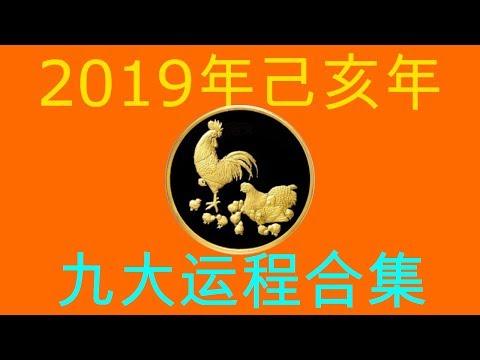 2019年己亥年九大运程大合集:肖鸡者