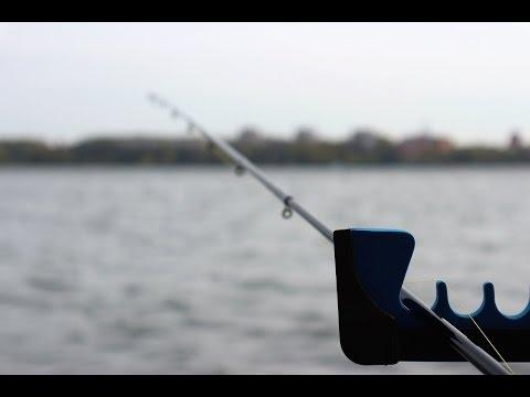апрельская рыбалка на карпа
