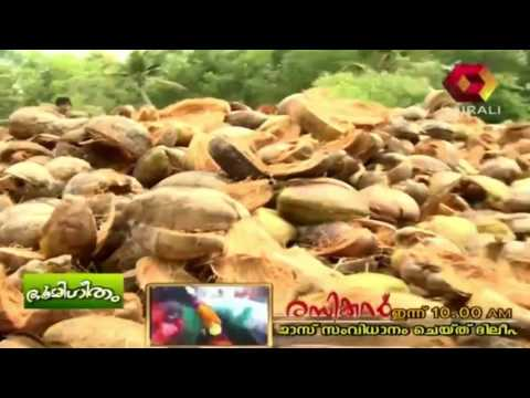 Bhoomigeetham | Coconut Producer Company | Part 1