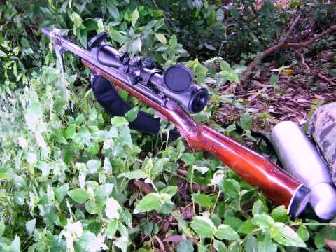 ปืนอัดลมยิงนกกรดปูด