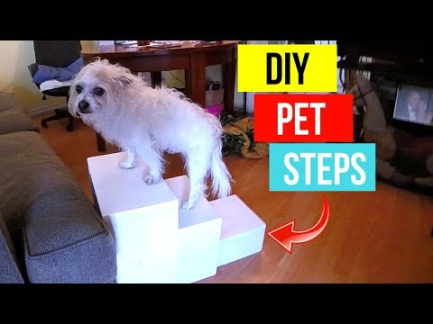 diy-dog-pet-stairs--jonny-diy
