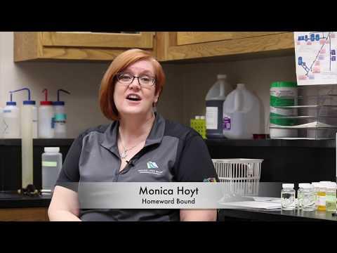 Monica Hoyt -  Homeward Bound #5 Application
