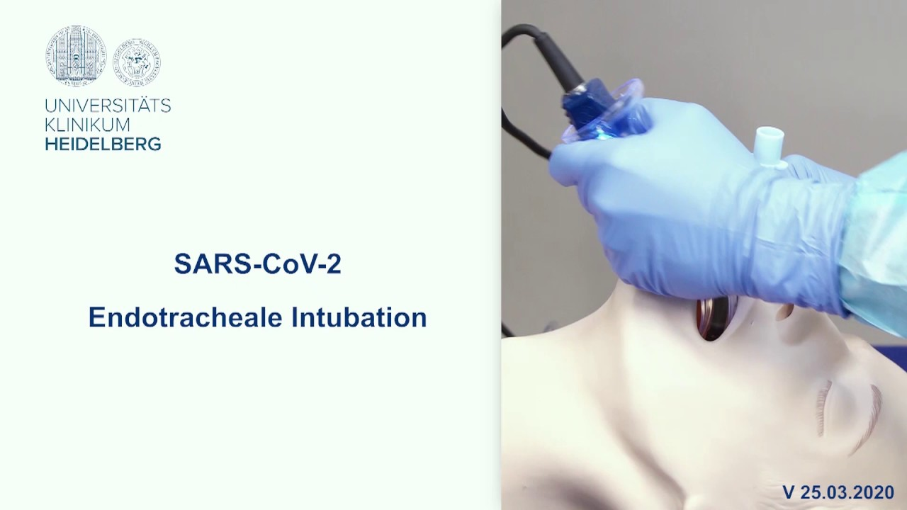SARS - CoV-2 Эндотрахеальная интубация. Переводчики на карантине