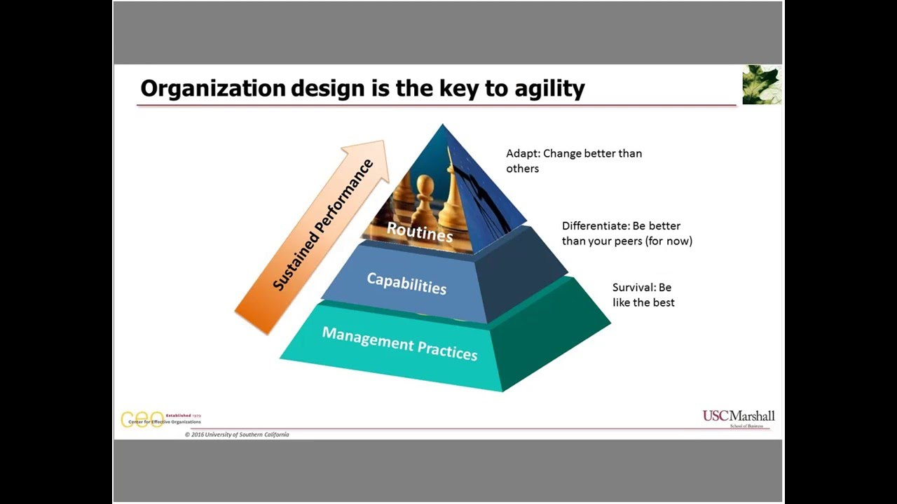 Organization Design Usc Center For Effective Organizations