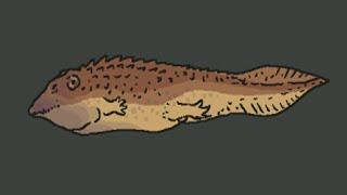 Scientific Issues: Jurassic Park - Part 1