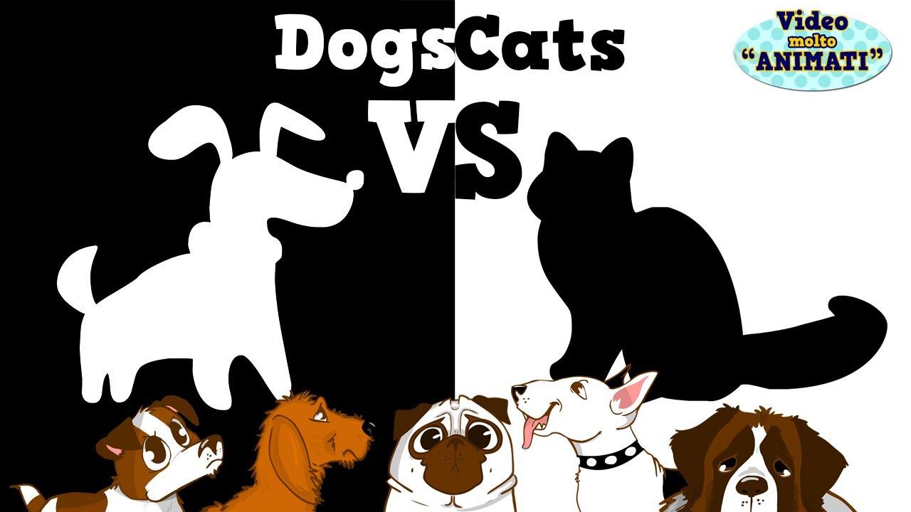 Cani contro gatti cartone animato di elena pugger youtube