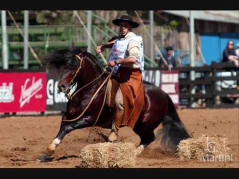 Cavalo Crioulo Luiz Carlos Borges Letrasmusbr