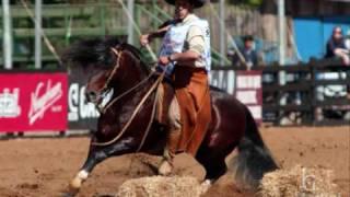 Cavalo Crioulo - Luiz Carlos Borges & Mauro Ferreira