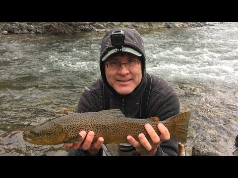 "Yellowstone National Park Flyfishing (Part 1), ""THE GARDINER RIVER"", Oct. 2019"