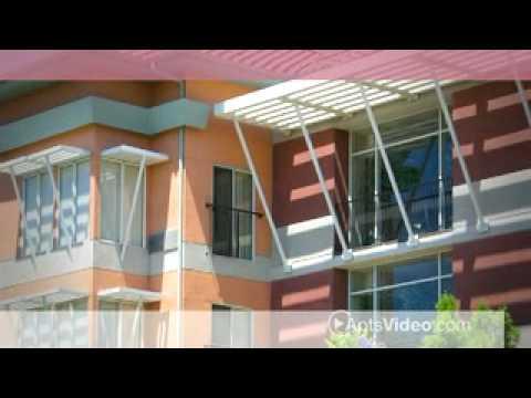 Atrium Garden Studio Apartments In San Jose Ca Youtube