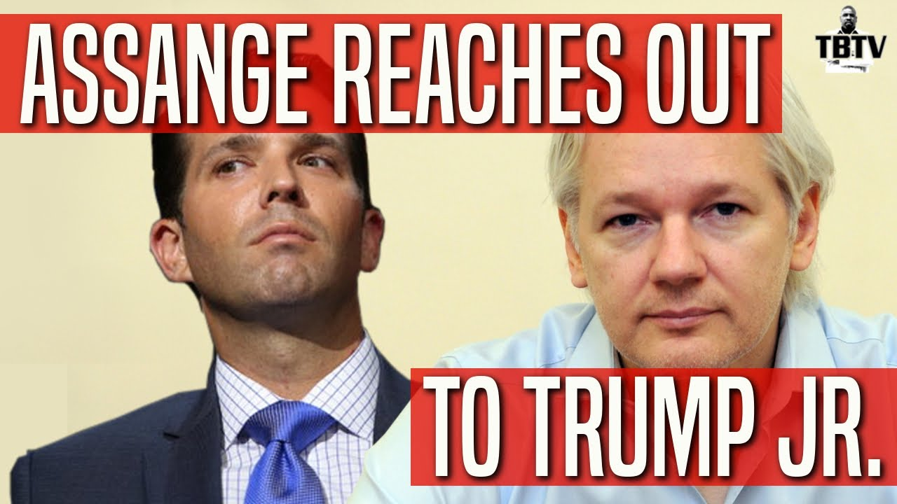 Image result for photos of donald trump jr and julian Assange