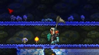 HOW TO FARM TRUFFLE WORMS (Terraria 1.3 / 1.2.4)