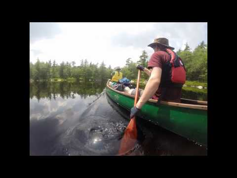 Kejimkujik Canoe Trip 2015