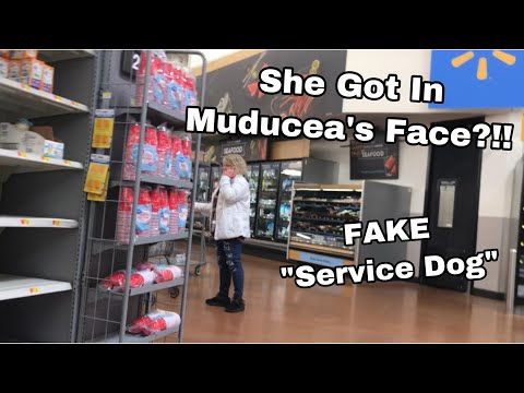 Lady SCOLDS My Service Dog For Not Wearing A Vest! | March 23rd